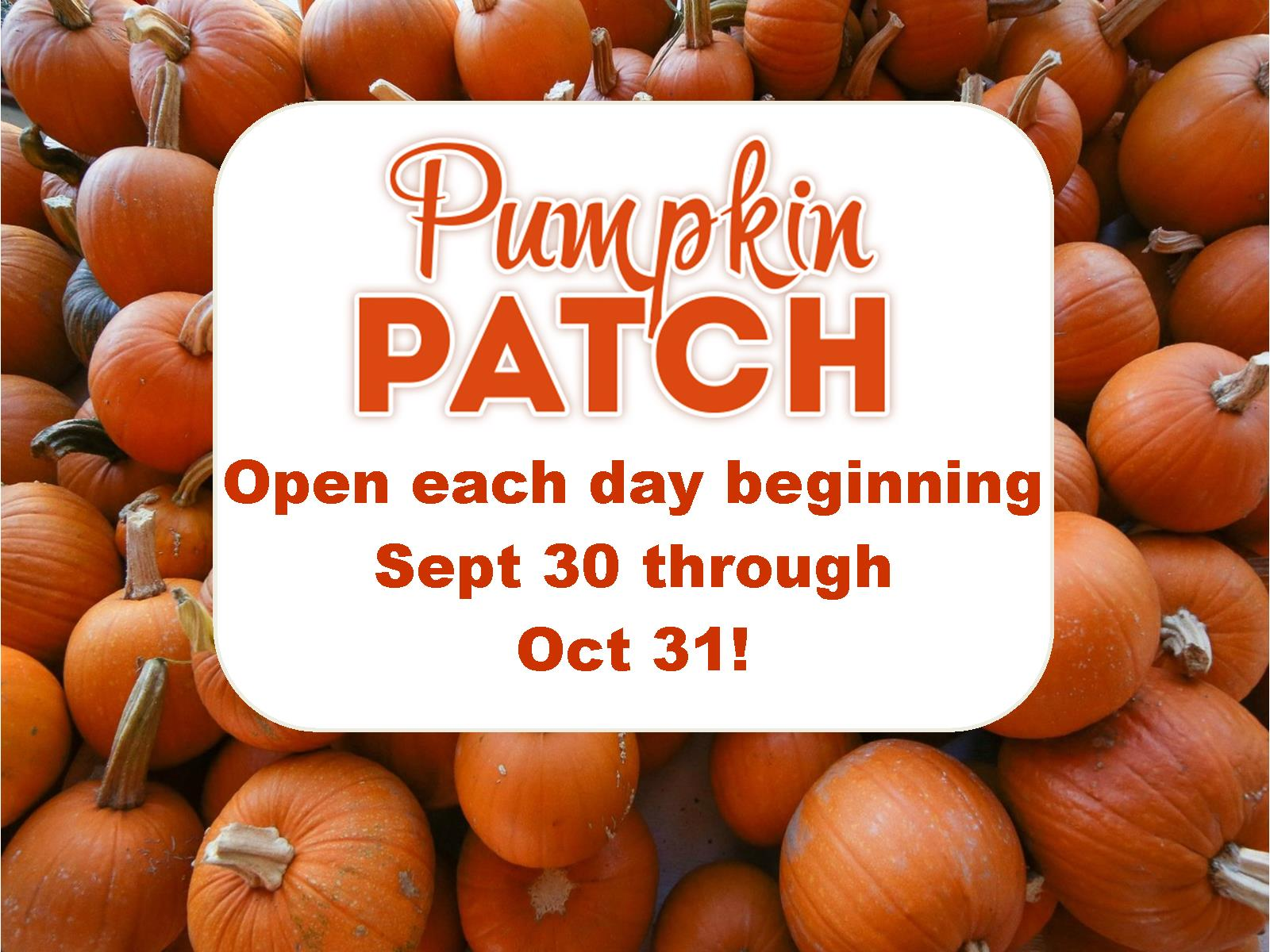 Pumpkin Patch 2017 Promo