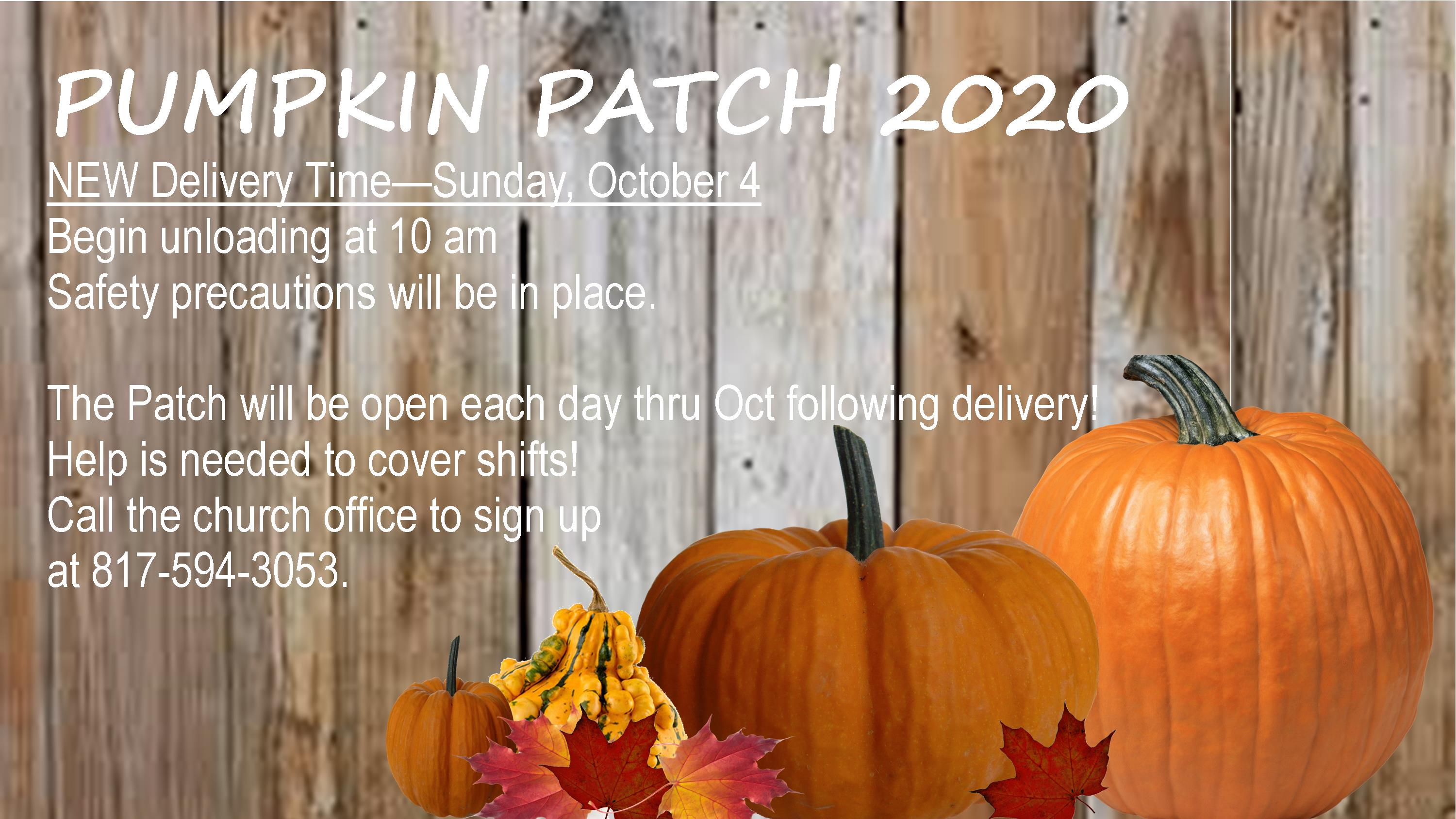Pumpkin Patch 2020 Delivery 2